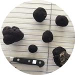 Drying Truffles
